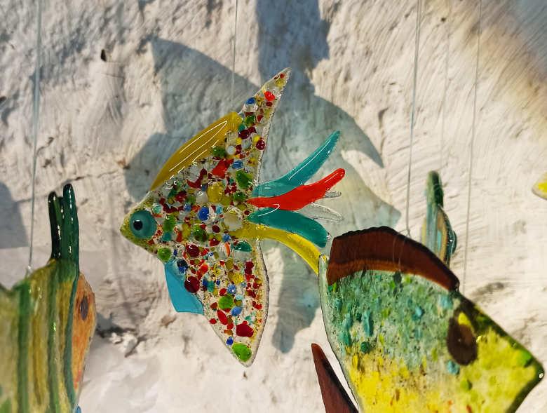 poisson avec des ronds colorés